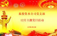 旅投资本公司党支部开展12月主题党日活动