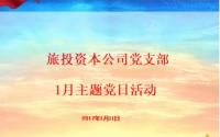 旅投资本公司党支部开展1月主题党日活动