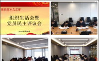 旅投资本公司召开组织生活会暨党员民主评议会
