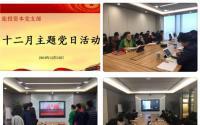 旅投资本公司党支部开展十二月主题党日活动